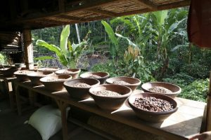 Subak Agrowisata Baturiti