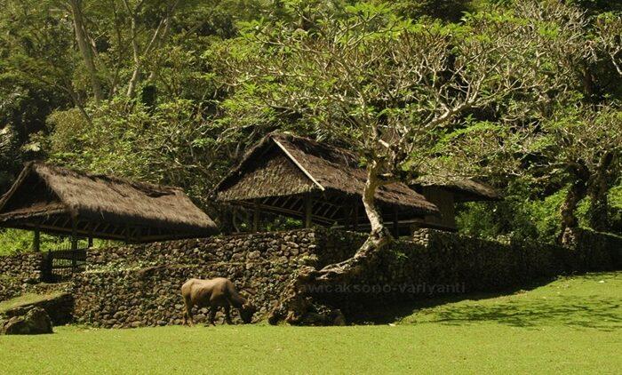 Tempat wisata unik di Bali yang jarang di lirik tamu domestik