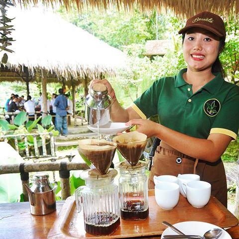Basanta Cofffe Bali