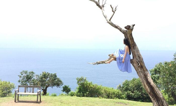 2  Pilihan Paket Wisata Nusa Penida Sehari