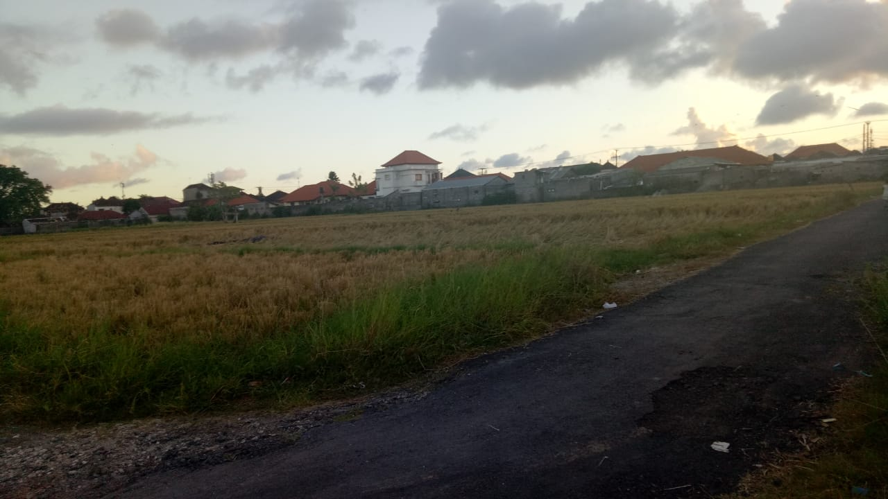 tanah kontrakan denpasar murah